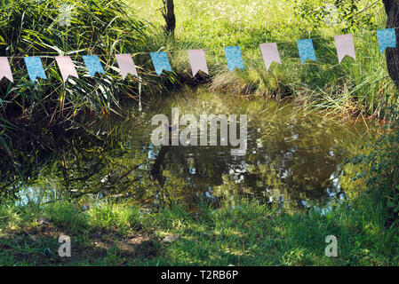 Duck in the water swimming lonely in a summer sunny day Selective focus - Stock Photo