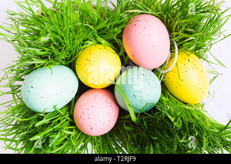 Colorful pastel eggs on green grass, top view. Flat lay style. Decorated Easter eggs - Stock Photo