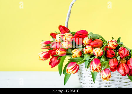 Spring easter tulip in a basket. Flowers bouquet on yellow background. - Stock Photo