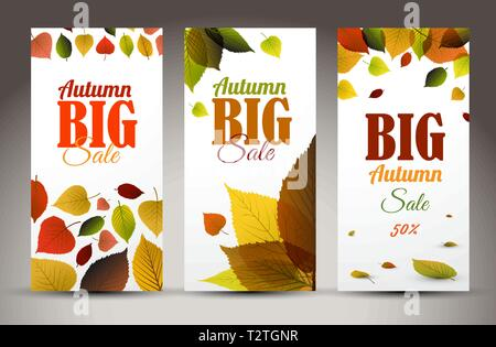 Set of fresh natural fall vertical banners with leafs and sample text - Stock Photo