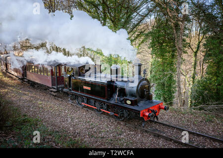 Steam Train with engine belching smoke and steam.  0-6-0T Locomotive Twizell pulling passenger carriages on Tanfield Railway County Durham - Stock Photo