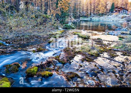 Italy, Aosta Valley, Rhemes Valley, Pellaud alpine lake, European larches forest in autumn (Larix decidua) - Stock Photo