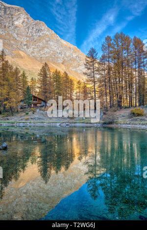 Italy, Aosta Valley, Rhemes Valley, Pellaud alpine lake, European larches forest in autumn (Larix decidua), restaurant - Stock Photo