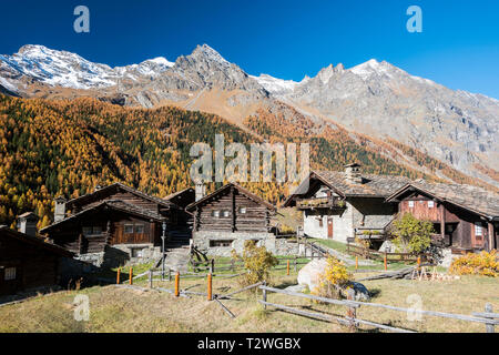 Italy, Valsavarenche, Gran Paradiso National Park, the village of Nex, renovated respecting the original outline by the architect Franco Binel; Norway Spruce and European larch forest in autumn - Stock Photo
