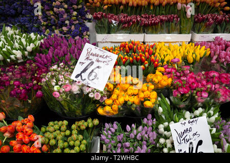 Columbia Road flower market on a Sunday morning in March, Bethnal Green, Tower Hamlets, Greater London, London, England, United Kingdom, Europe - Stock Photo