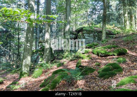 Baernloch-Wanderweg - Stock Photo