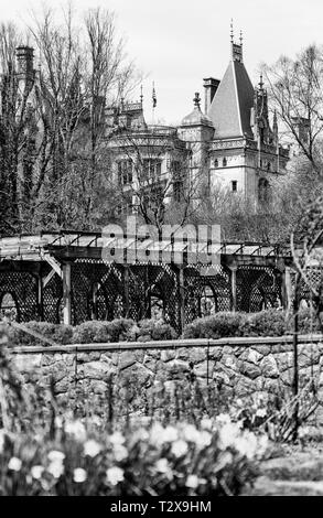 A view from the Walled Garden reveals blooming daffodils, the grape arbor, and the Biltmore House looming in the background - Stock Photo
