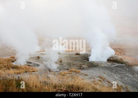 Fumaroles in Norris Geyser Basin, Yellowstone National Park - Stock Photo