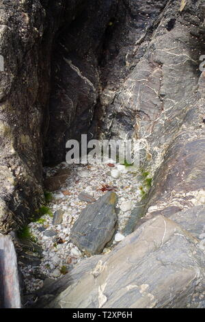 Small Round Rockpool with Quartz Pebble Bottom on the Shore along Hope Cove, South Devon, UK. - Stock Photo