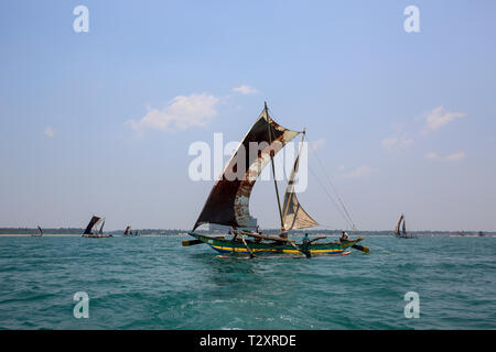 Sri Lankan traditional fishing catamarans in Laccadive Sea at Negombo, Sri Lanka - Stock Photo