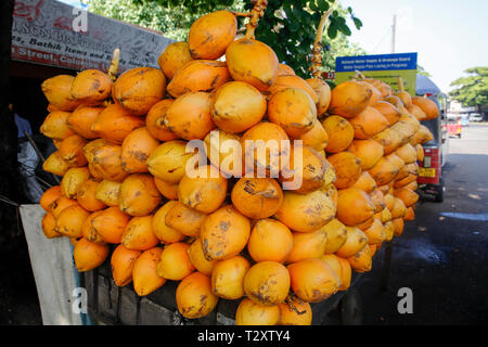 Red King coconuts for sale on the street in Colombo, Sri Lanka - Stock Photo