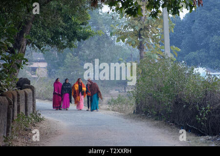 A group Indian woman are walking through rural road in winter morning - Stock Photo