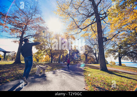 Man walking dog throwing football to boy in a park on autumn day. - Stock Photo