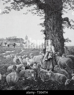 Digital improved reproduction, Spring song, painted by Fritz Beinke, a young shepherdess from whom Schafherde surround stands in a tree and sings and, besides, knits, Frühlingslied, gemalt von Fritz Beinke, eine junge Hirtin, von der Schafherde umgeben, steht an einem Baum und singt und strickt dabei, from an original print from the 19th century - Stock Photo