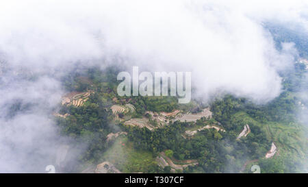 A glimpse of rice fields cultivation and patches of forest from high altitude. Near Nglanggeran mountain - Stock Photo