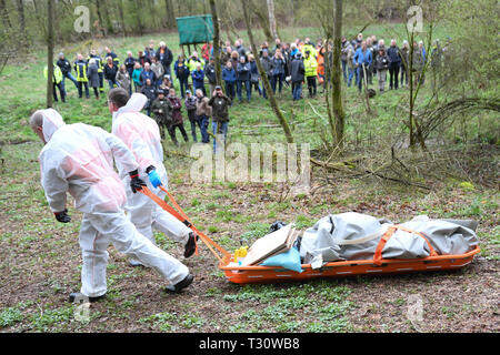 05 April 2019, Hessen, Aßlar-Bechlingen: Two trained employees of the Landesbetriebs HessenForst transport a wild boar carcass during an animal health exercise to test a possible outbreak of African swine fever. During a two-day exercise, the authorities want to prepare themselves for a possible outbreak of swine fever in this country. Photo: Arne Dedert/dpa - Stock Photo