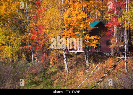 Home nestled among the autumn splendor of Michigan's Upper Peninsula and the Ottawa National Forest. - Stock Photo