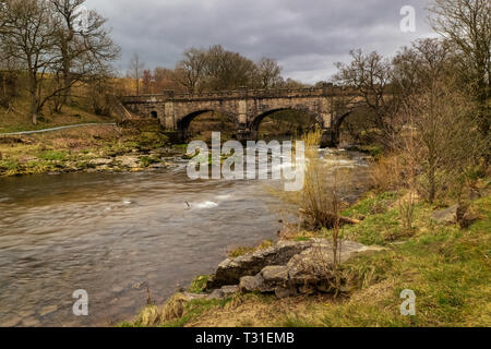 From Bolton Abbey a pleasant riverside walk leads upstream through woods to the Strid, a notorious stretch of water where the River Wharfe is forced i - Stock Photo