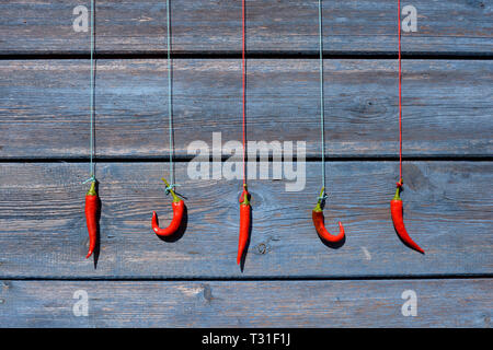 red chili peppers hanging and drying on a rope on a wooden wall - Stock Photo