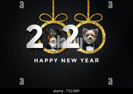 Happy new year 2020 with two Dogs - Stock Photo
