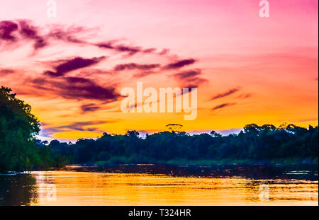 View on Colourful amazon sunset with river and forest. Brazil - Stock Photo