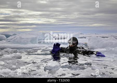 Scuba diving in Arctic Sea, Spitsbergen, Arctic Ocean, Norway - Stock Photo