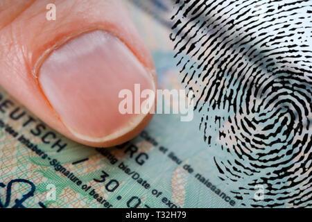 PHOTOMONTAGE, thumb on German identity card and fingerprint, FOTOMONTAGE, Daumen auf deutschem Personalausweis und Fingerabdruck - Stock Photo