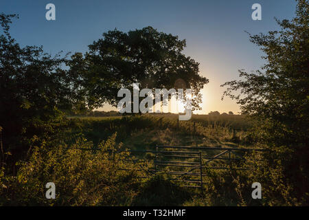 Sunrise over countryside near Audlem, East Cheshire, England, from Snows Bridge, Shropshire Union Canal - Stock Photo
