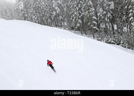 Sellnäs, Sweden 20190406 Skier in a wintry and foggy Romme alpine just outside Borlänge during Saturday. Photo Jeppe Gustafsson - Stock Photo