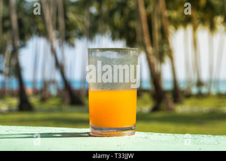 Glass with Freshly Pressed Tropical Fruits Juice Standing on Beach. Green Palm Tree Leaves Succulents in Background. Blue Sky Golden Sunlight Turquois - Stock Photo