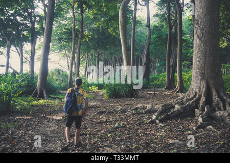 Tourist walks through the rainforest in Havelock island Andaman and Nicobar Islands. Subtropical forest High huge trees growing in tropical climates - Stock Photo