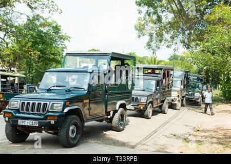 Off-road vehicles waiting for tourists in Yala National Park, Sri Lanka - Stock Photo