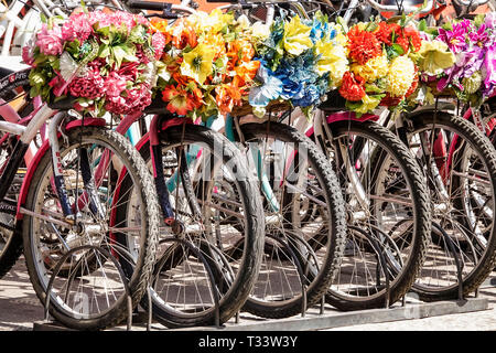 Colombia, Cartagena, Old Walled City Center centre, Getsemani, rental bicycles, decorative flower baskets, wheel, sightseeing visitors travel travelin