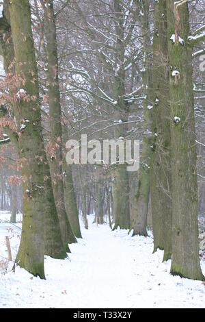 Hernen Castle in the winter
