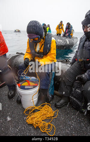 Alison Lee Cusick a scientist working on citizen science on an Antarctic cruise ship shows passengers how to trawl for plankton and algae, as part of  - Stock Photo