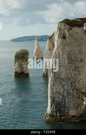 The Pinnacles are two chalk formations, including a stack and a stump, located near Handfast Point, on the Isle of Purbeck in Dorset, Southern England - Stock Photo
