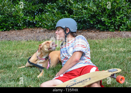 A pit bull loves pulling his teenage owner on his skateboard down the street. They do it a time or two and then play in the grass to rest. - Stock Photo