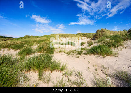 West Beach of Prerow - Stock Photo