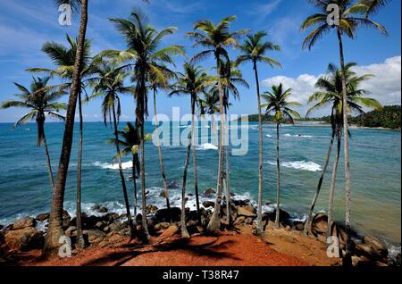 Tropical scenery of a coastline in south Sri Lanka - Stock Photo