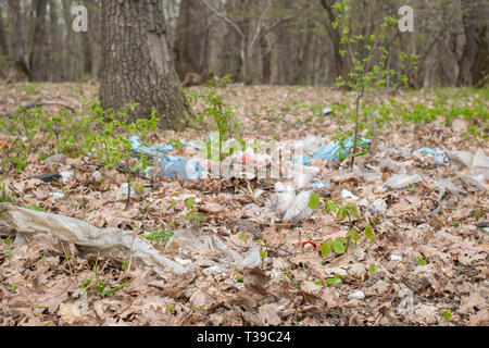 garbage in the forest among the spring shrubs - Stock Photo