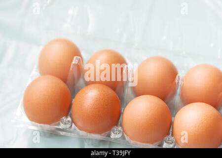 Fresh brown hens eggs in the transparent plastic package - Stock Photo