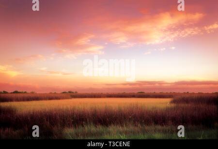 The sun sets over marsh grass, Aug. 15, 2015, in Bayou La Batre, Alabama. - Stock Photo