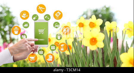 gardening equipment e-commerce concept, online shopping on smart phone, hand pointing and touch screen with tools icons, on spring flower plants backg - Stock Photo