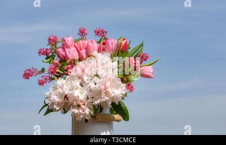 Colorful bouquet of pink and white spring flowers with tulips, white rhododendron blooms and weigela on a sunny day with blue sky - Stock Photo