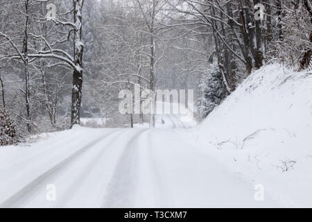 Snowy road in the country. - Stock Photo