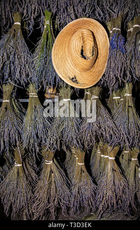 Lavender hanging to dry and a straw hat, Doylestown, Pennsylvania,  USA, vertical farming abstract still life, comedy hat flower farm botanical - Stock Photo