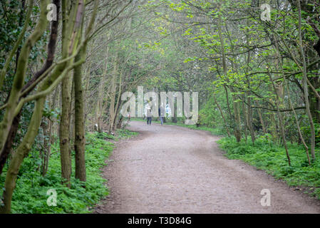 Leg o' Mutton Nature Reserve alongside the River Thames in Richmond upon Thames, London, UK. Walkers on Thames Path tree lined canopy avenue - Stock Photo