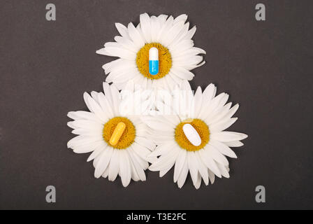 Chamomile flowers, homeopathic medicine  Tablets on yellow