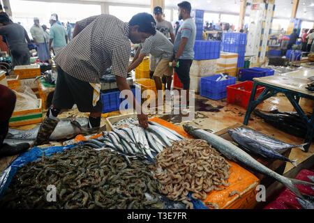 Central fish market in Colombo, Sri Lanka - Stock Photo