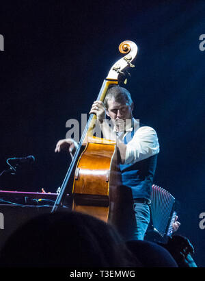 Nate Query, bassist of The Decemberists band perfoming playing music upright bass in concert - Stock Photo